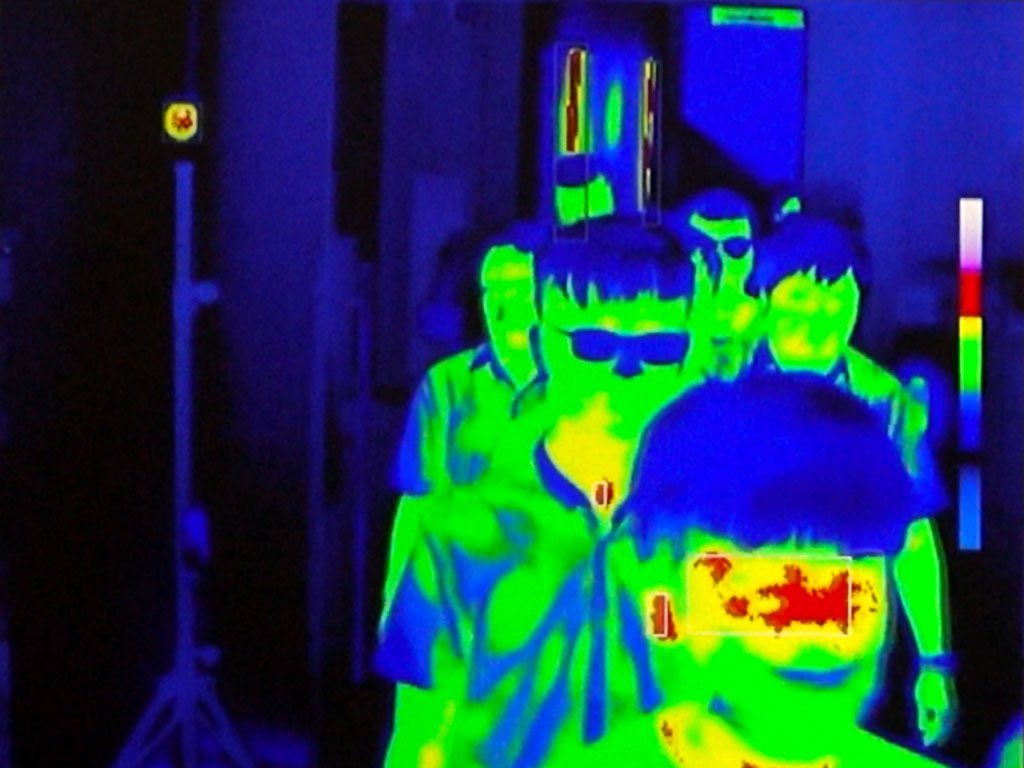 Mass fever screening system detection in thermal screen